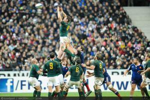 Test Match - Afrique du Sud : le groupe pour la tourn�e